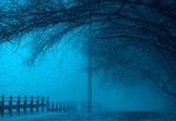 Арктический циклон принес в Воронеж климатическую зиму