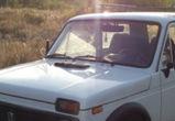 Под Воронежем «Нива» врезалась в гужевую повозку: оба водителя в больнице