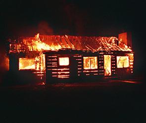 В Воронеже по неизвестным причинам загорелась баня: огонь уничтожил постройку