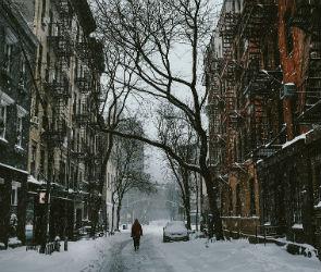 Воронежцам обещают снежную рабочую неделю