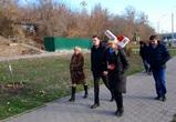 На улице Степана Разина могут высадить кустарники и озеленить подпорную стену