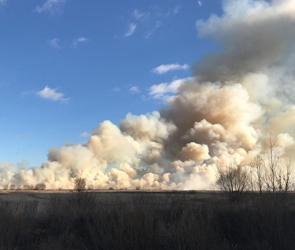 Появились фото крупного ландшафтного пожара рядом с Воронежем