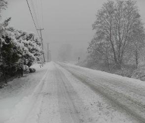 Синоптики спрогнозировали обильный ночной снегопад в Воронеже