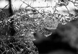 Автомобилистка и ее пассажир погибли в аварии под Воронежем