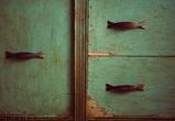 Воронежцы сообщили о ЧП в школе: на 10-летнюю девочку упал шкаф
