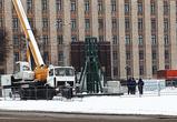 На площади Ленина начался монтаж главной новогодней елки Воронежа: ФОТО