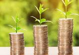 За экономические успехи Воронежский регион получит грант в 715 млн рублей