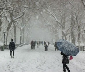 Синоптики рассказали, когда в Воронеже закончится снегопад