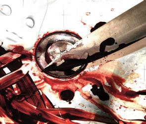 В Воронеже женщина зарезала знакомого двумя ножами одновременно