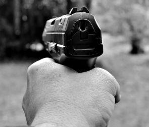 В Воронеже ученик принес в школу пистолет