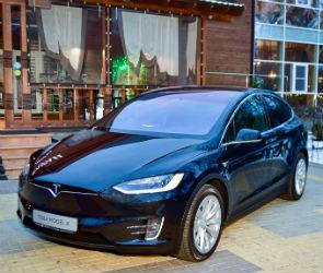 Tesla в заповедном лесу: как прошел день рождения парк-отель ТайGA