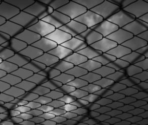 Бывший воронежский чиновник-дорожник отправится в тюрьму за взятку