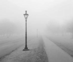 Желтый уровень погодной опасности объявлен в Воронеже