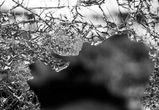 Молодая автоледи на «Форде» погибла в ДТП на левом берегу Воронежа