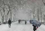 Синоптики рассказали о погоде в предновогодние дни в Воронежской области