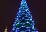 Воронеж вошел в число городов с самыми высокими главными елками