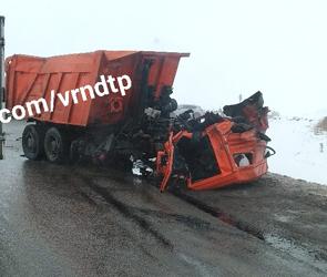 Опубликованы фото жуткого ДТП с тремя фурами на М-4 под Воронежем, есть жертвы