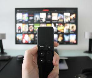 В Воронеже могут наладить производство телевизоров и микроволновок