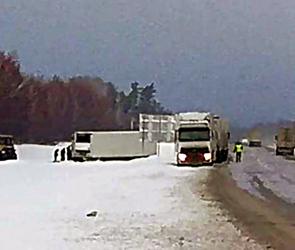 На воронежской трассе из-за снегопада грузовик вылетел в кювет (фото)
