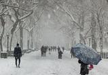 В Воронежскую область перед Рождеством придут морозы и снегопады