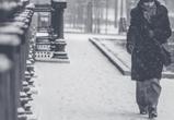 Ветреные и снежные выходные ожидаются в Воронежской области