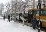Активисты занялись проблемами общественного транспорта в Воронеже