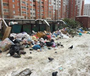Заваленную мусором контейнерную площадку на Урывского назвали провокацией