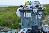 В Воронеже снизят тариф на вывоз мусора