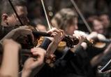 Второй фестиваль камерной музыки пройдет в Воронеже в апреле