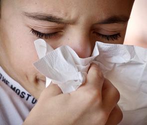 В Воронеже зафиксирован заметный рост заболеваемости гриппом и ОРВИ