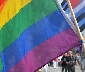 Воронежцы выйдут на пикет в защиту геев и лесбиянок