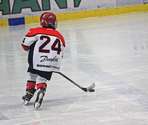 Спортивная хоккейная школа появится на базе катка «Арена Север» в Воронеже