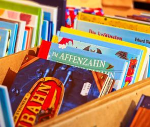 Воронежские волонтеры собирают книжки для детских больниц и приютов