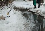 Воронежец снял на видео фекальный потоп на улице Ворошилова