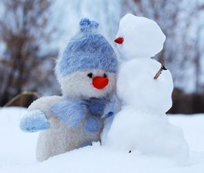 В январе в Воронеже зафиксировали аномальные снегопады и рекордные сугробы