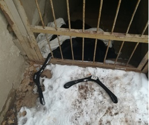 В одном из баров Воронежа орудовал курточный вор
