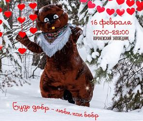 Воронежский заповедник проводит необычную акцию о любви и семейной жизни бобров
