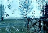 После резкого похолодания в выходные в Воронеже потеплеет до +3°C