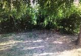 Житель воронежского села избил сожительницу и бросил ее умирать в кустах