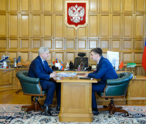 Новый глава АИР рассказал губернатору о планах по оптимизации работы агентства