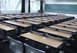 Воронежские школы возобновляют занятия после карантина