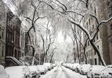 В выходные в Воронеже ожидаются мороз и снегопад