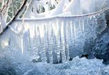 В Воронеже 8 марта обещают активное потепление с дождем
