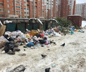 Воронежский бизнес заплатит за экологию мусорным рублем