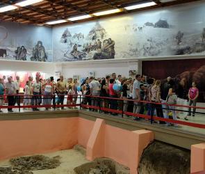 Под Воронежем нашли ребро мамонта с застрявшим наконечником