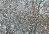На Воронежскую область надвигаются снег и метель