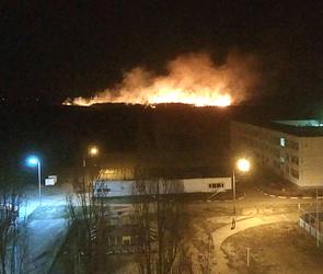 Воронежцев перепугал огромный пожар, бушевавший в пригороде: ФОТО, ВИДЕО