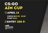 Турнир CS:GO AIM CUP в Воронеже
