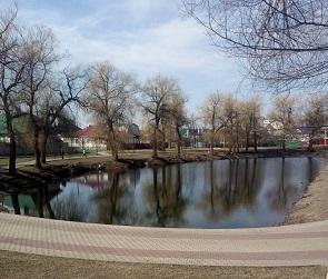 Воронежский пруд очистили от мертвой рыбы