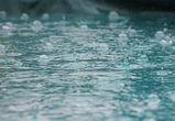 Выходные в Воронеже будут теплыми, но дождливыми